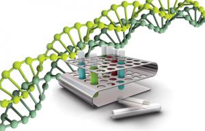 Онлайновая ДНК-диагностика