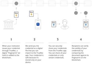 SAP представила мобильное блокчейн-решение для подтверждения подлинности документов