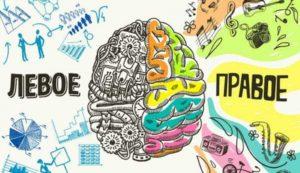 Тест: У вас хорошо работает мозг?